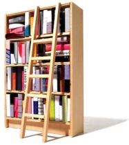 bookshelf-1bd461df34cf42c1f49aa6ab88759bb5
